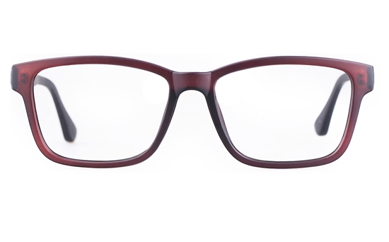 Poesia 3113 TCPG Mens Full Rim Optical Glasses