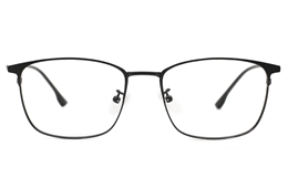 Titanium Stainless Eyeglasses