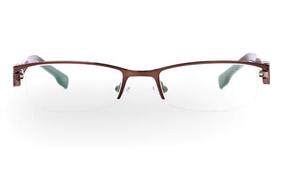 SF861 Stainless Steel/ZYL Mens&Womens Half Rim Optical Glasses