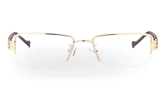 Stainless Steel/ZYL Half Rim Mens Optical Glasses