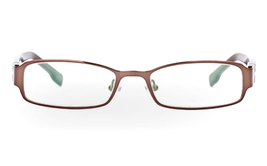 SF862 Stainless Steel/ZYL Half Rim Mens Optical Glasses